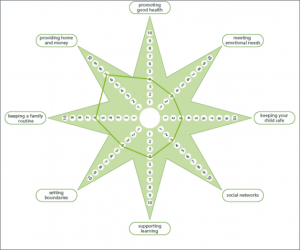 outcomes star social impact measurement SIMNA NSW